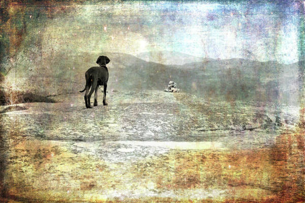 Photograph - Entering The Adventure Of The Unknown by Randi Grace Nilsberg