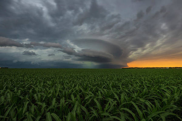 Wall Art - Photograph - Enterprise Tws by Aaron J Groen