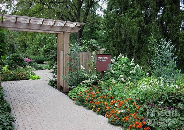 Photograph - Entrance To Fragrance Garden by Kathie Chicoine