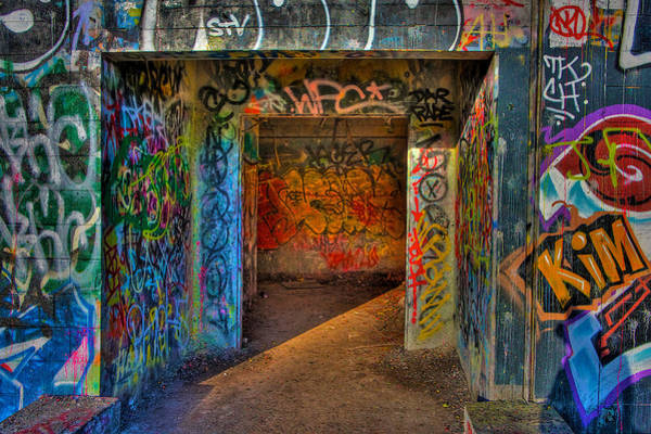 Wall Art - Photograph - Entrance To The Asylum by William Wetmore