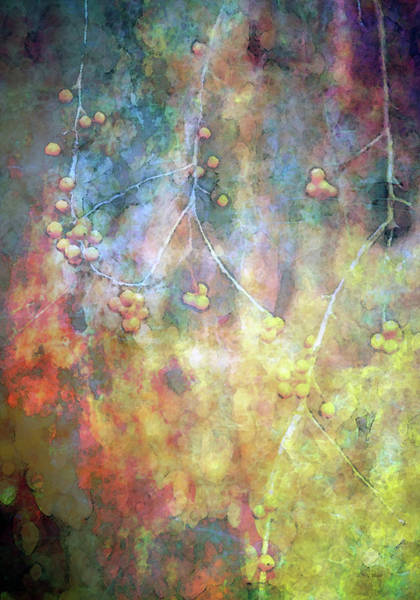 Photograph - Entropy Accelerating 7968 Idp_2 by Steven Ward