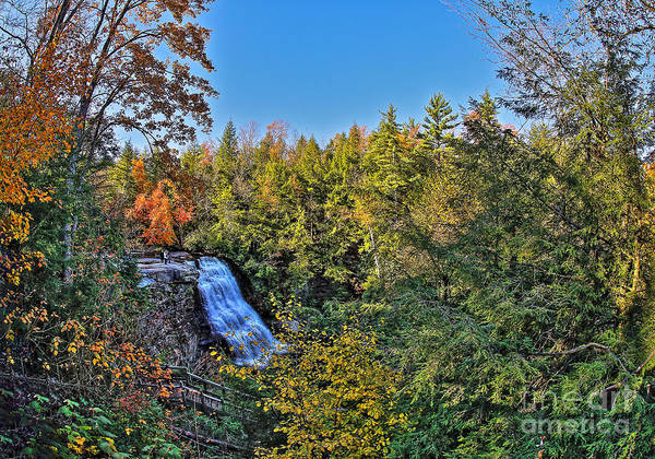 Swallow Falls State Park Wall Art - Photograph - Enveloped In The Autumn Landscape by SCB Captures