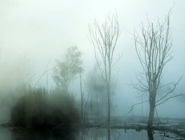Photograph - Enveloped by Nicholas Blackwell