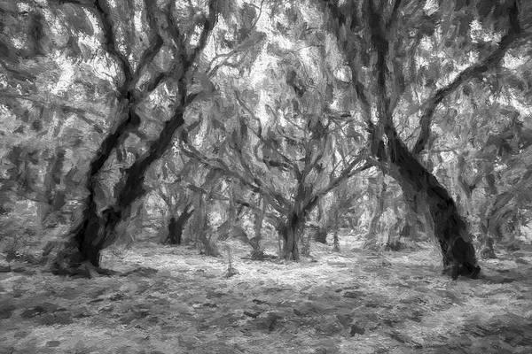 Digital Art - Enveloped Timber II by Jon Glaser