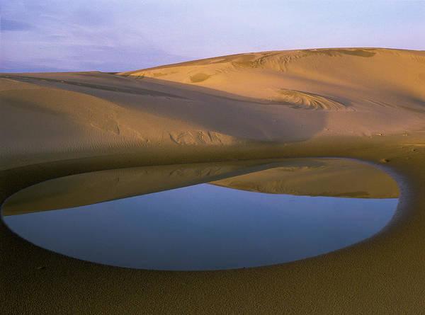 Photograph - Ephemeral Pond by Robert Potts
