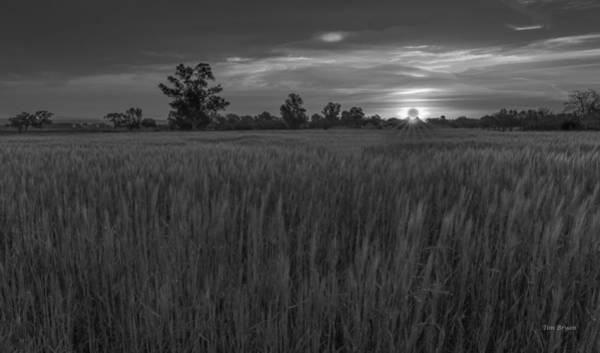 Photograph - Equinox by Tim Bryan
