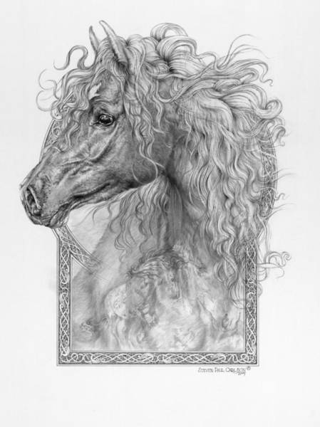Magical Drawing - Equus Caballus - Horse - The Divine Gift by Steven Paul Carlson
