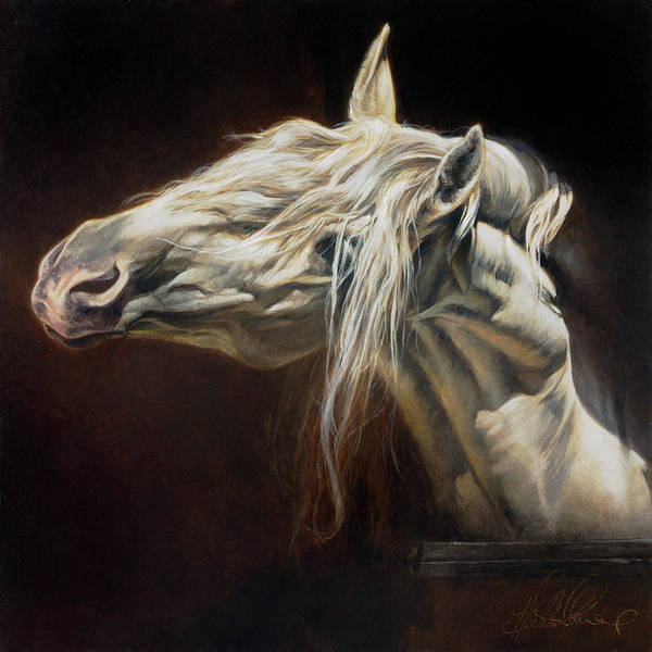 Andalusian Wall Art - Painting - Equus Series I-iv by Heather Theurer