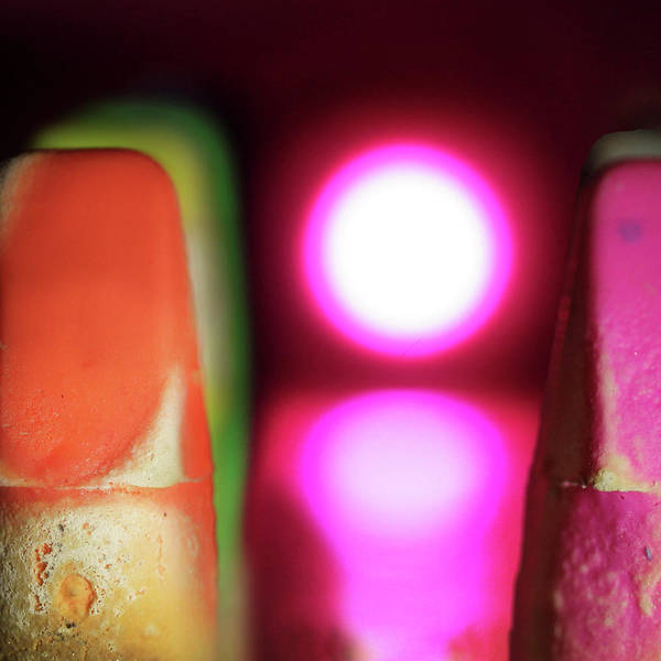 Photograph - Erasers by Stephen Dorsett