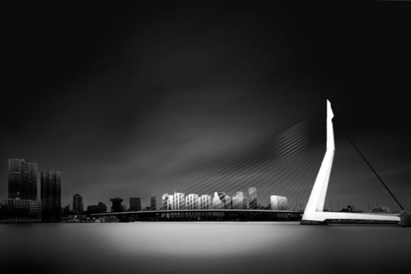 Contrast Wall Art - Photograph - Erasmus Bridge Rotterdam by Denis
