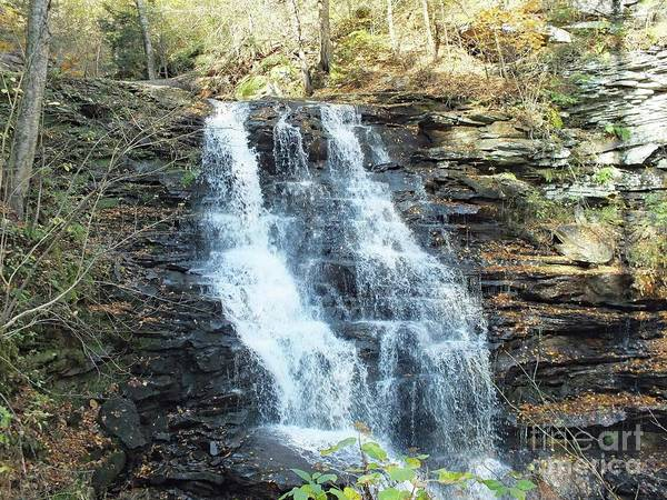 Sullivan County Photograph - Erie Falls 3 - Ricketts Glen by Cindy Treger