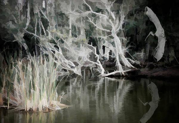 Photograph - Erie Jungle by Rosalie Scanlon