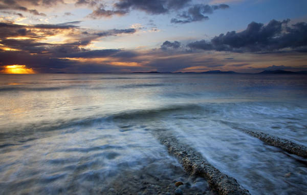 Whidbey Island Wall Art - Photograph - Eroded By The Tides by Mike  Dawson
