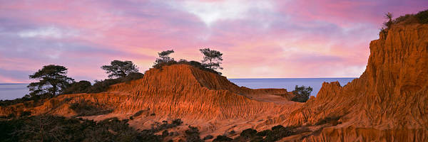 Torrey Pines Photograph - Eroded Hill With Ocean by Panoramic Images