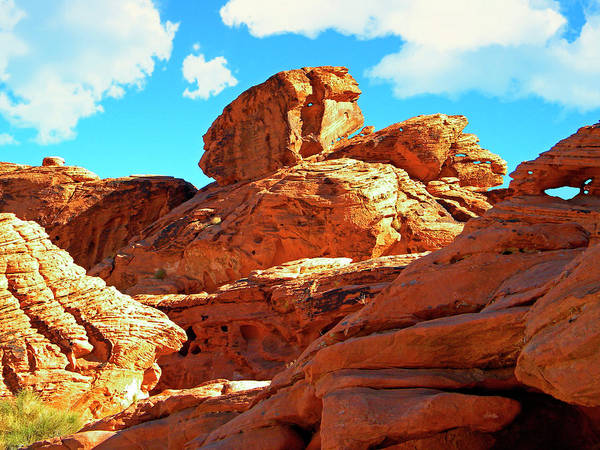 Photograph - Eroded Red Sandstone by Frank Wilson