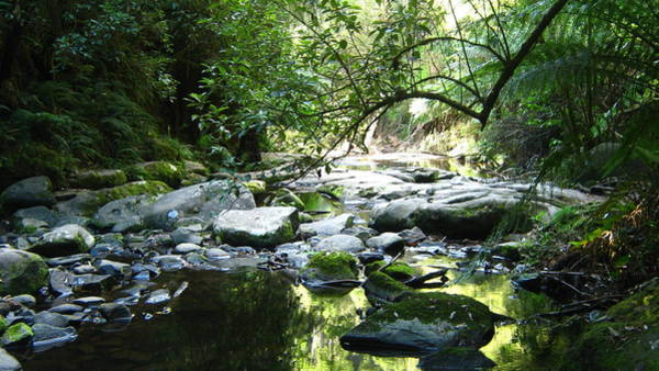 Photograph - Erskine River by Emma Frost