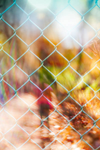 Chain Link Photograph - Escape by Erin Cadigan