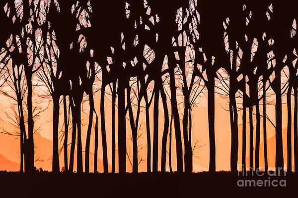 Photograph - Essence Of Sunset by Michael Arend