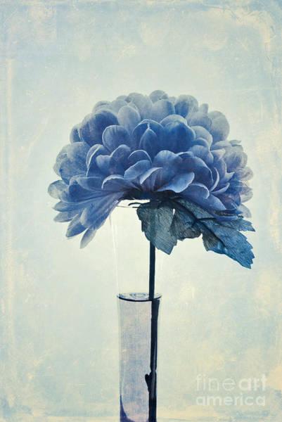 Blue Vase Photograph - Estillo - 05b2vt03 by Variance Collections