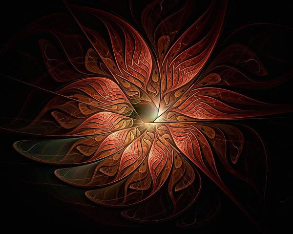 Wall Art - Digital Art - Etched Petals by Amanda Moore