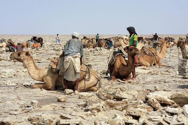 Great Lakes Region Wall Art - Photograph - Ethiopian Salt Flats by Aidan Moran