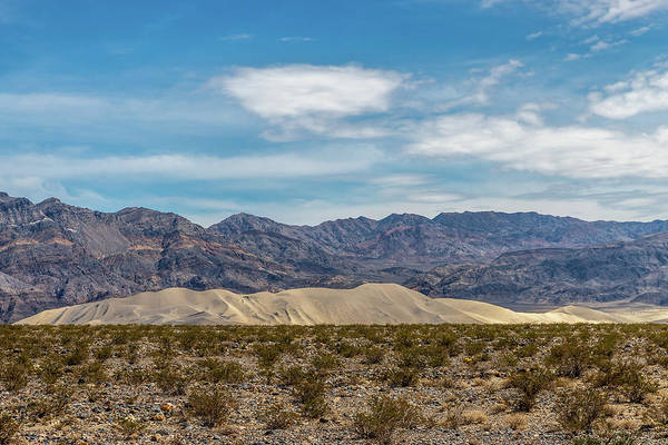 Big Pine Wall Art - Photograph - Eureka Dunes In Perspective by Peter Tellone