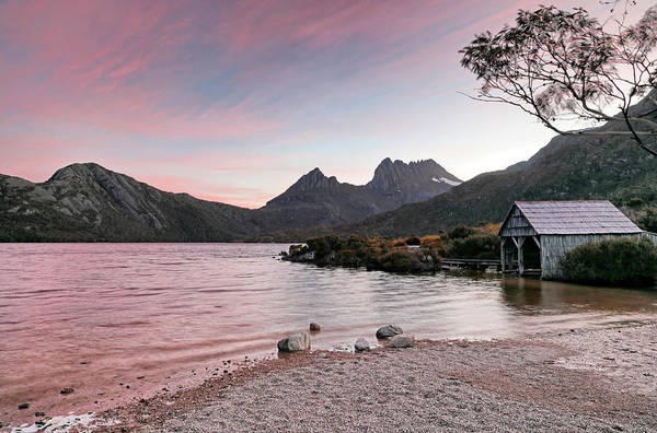 Photograph - Evening At Dove Lake by Nicholas Blackwell