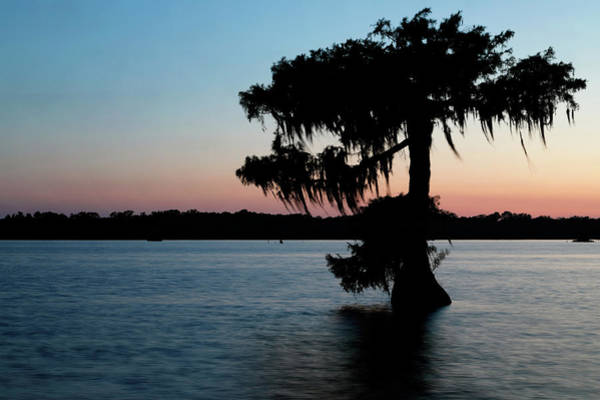 Photograph - Evening At Lake Martin 1 by Nicholas Blackwell