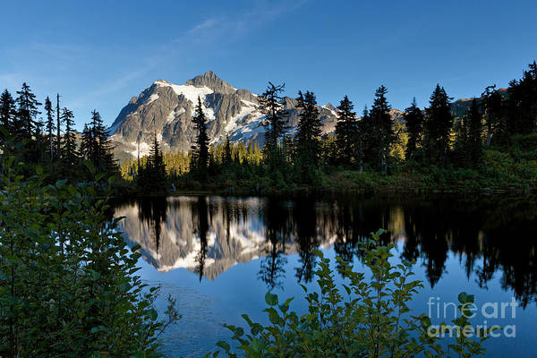 Photograph - Evening At Mt Shuksan by Beve Brown-Clark Photography