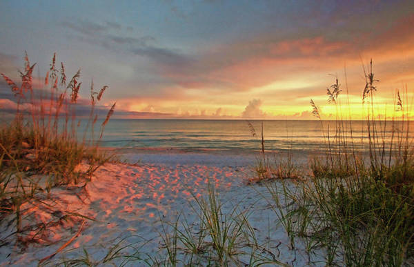 Wall Art - Photograph - Evening At The Beach by HH Photography of Florida