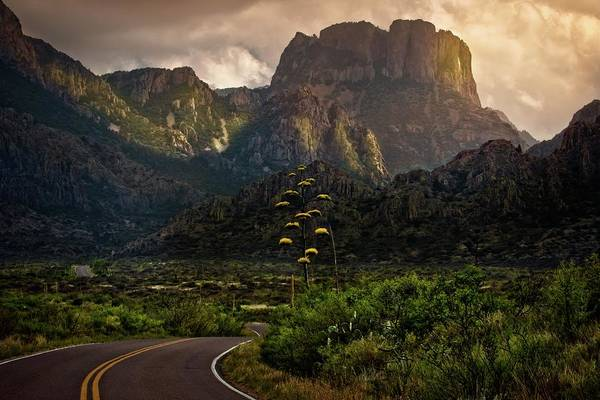 Middle Of Nowhere Photograph - Evening At The Chisos by Linda Unger