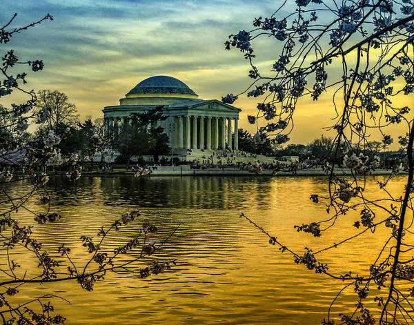 Photograph - Evening At The Jefferson by Nick Zelinsky