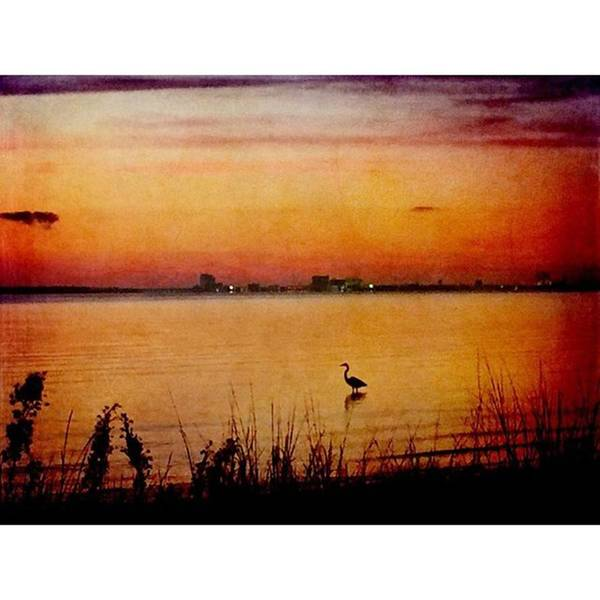 Wall Art - Photograph - Evening Beauty #oceanspringsmississippi by Joan McCool