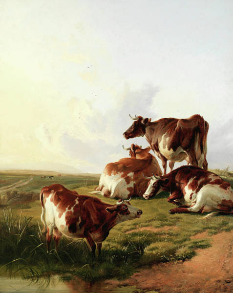Breeding Painting - Evening Glow, At The End Of The Day by Thomas Sidney Cooper