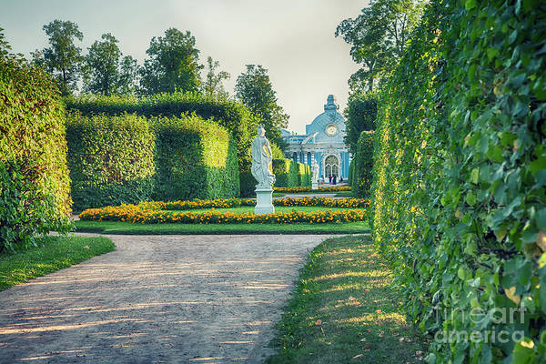 Photograph - Evening In Classic Park by Ariadna De Raadt