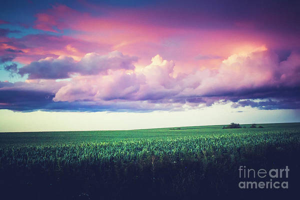 Wall Art - Photograph - Evening In The Palouse by Katya Horner