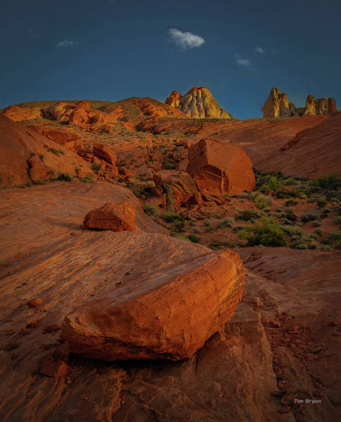 Photograph - Evening In The Valley Of Fire by Tim Bryan