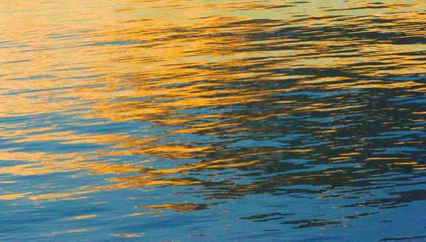 Photograph - Evening Light Cast Across The Water by Polly Castor
