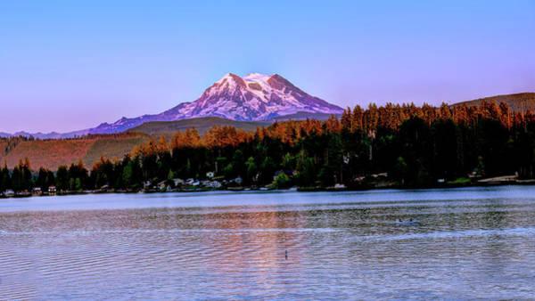 Photograph - Evening Mt Rainier by Bill Dodsworth