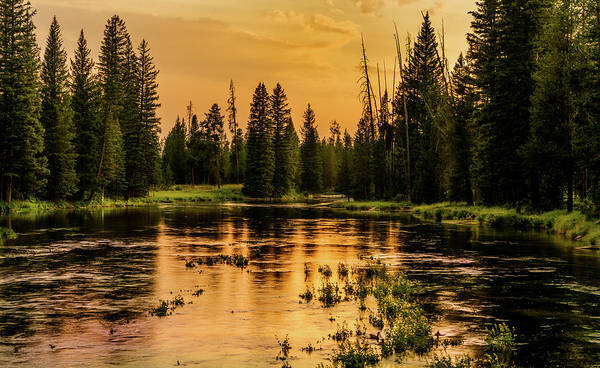 Photograph - Evening On The Henry's Fork  by TL Mair