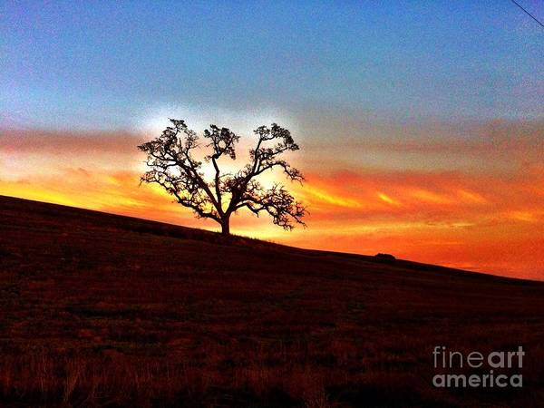 Photograph - Evening Peace  by S Forte Designs
