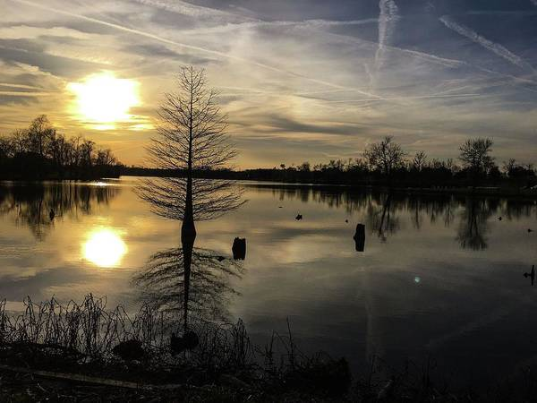 Photograph - Evening Reflections  by Sumoflam Photography