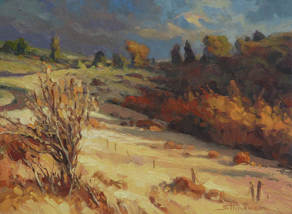 Wall Art - Painting - Evening Shadows by Steve Henderson