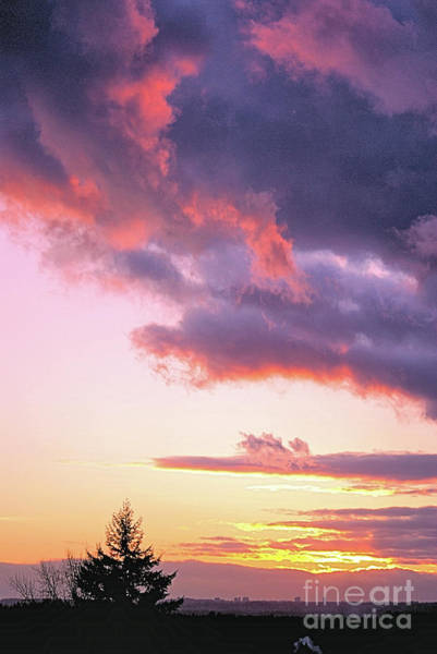 Photograph - Evening Sky by Victor K
