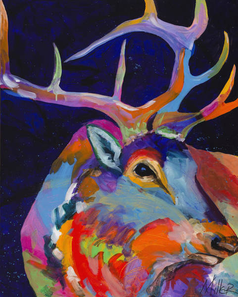 Colorado Wildlife Wall Art - Painting - Evening Sounds by Tracy Miller