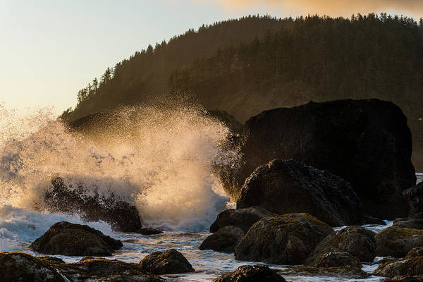 Photograph - Evening Surf by Robert Potts