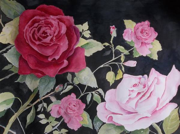 Painting - Ever Changing Confederate Rose by Audrey Bunchkowski