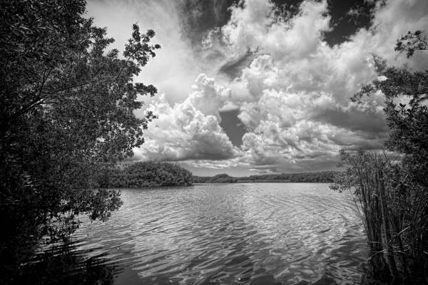 Photograph - Everglades Lake - 0278abw by Rudy Umans