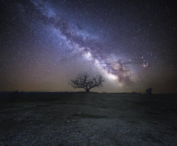 Photograph - Everlast by Aaron J Groen