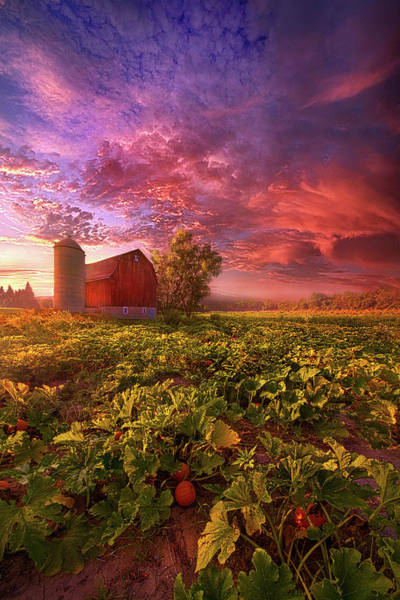 Photograph - Every Dark Night Turns Into Day by Phil Koch